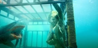 Shark Night 3D (Movie) Review 1