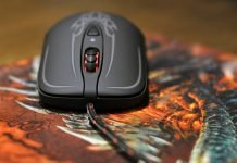 SteelSeries Diablo III Mouse Review 1