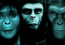The Ranking Of The Apes