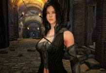 Black Desert Online Annonces Final Closed Beta