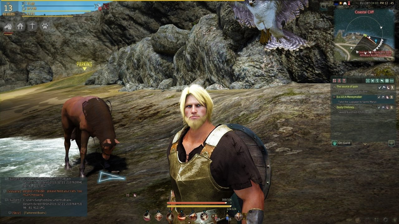 Black Desert Online (PC) Preliminary Review 2