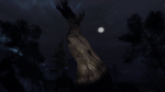 Through the Woods Preview: Terrifying Yet Promising 2