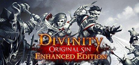 Divinity: Original Sin – Enhanced Edition (PC) Review 4