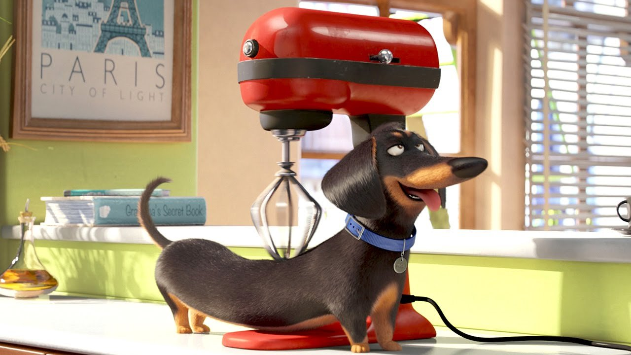 The Secret Life Of Pets (Movie) Review 2