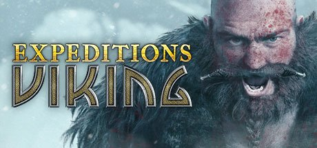 Expeditions: Viking Review- A Slightly Strategic RPG