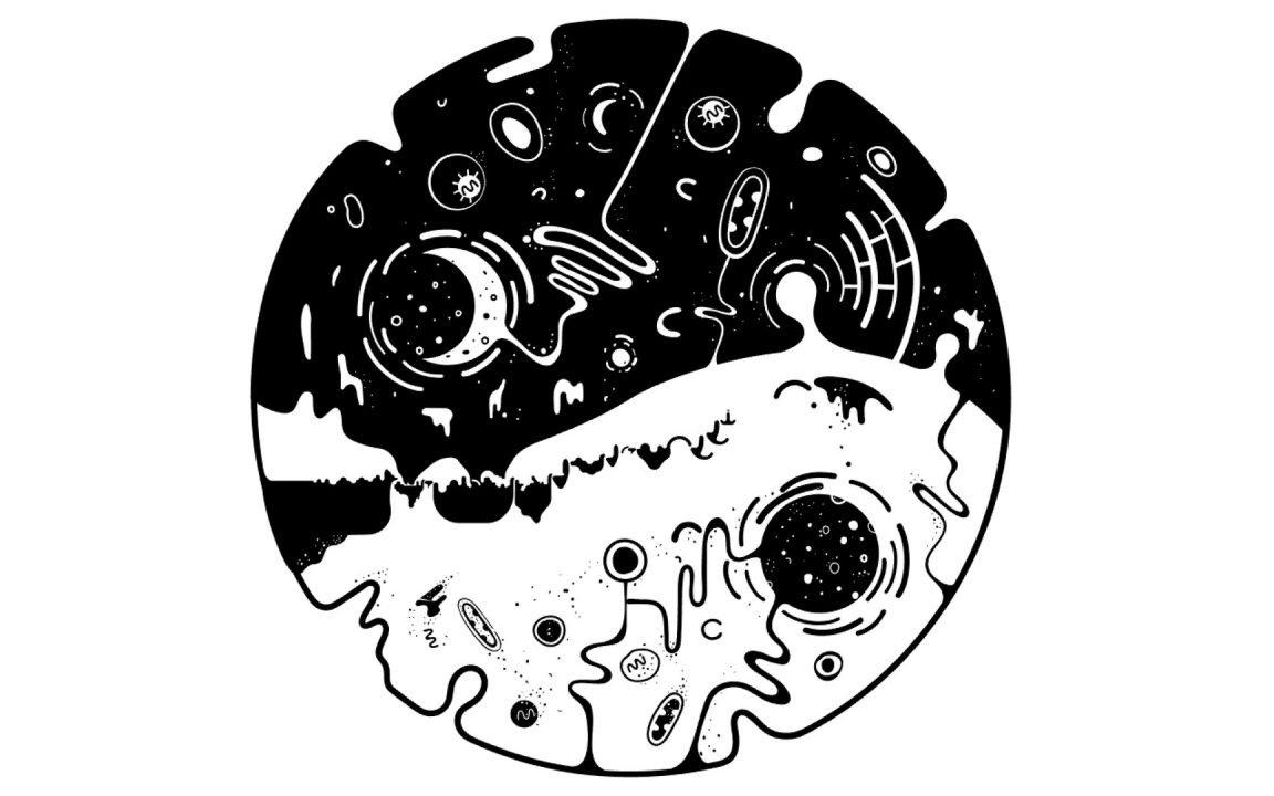 Ovivo Review - Artistic Platformer