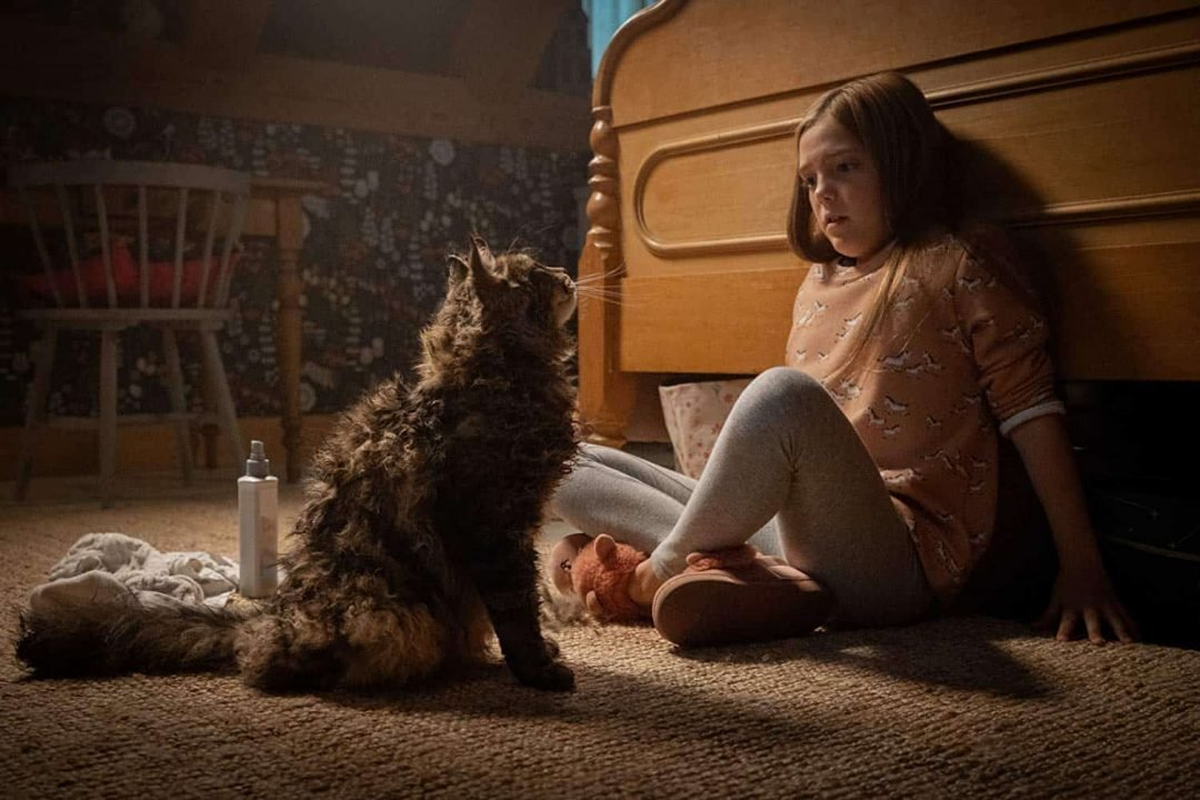 Pet Sematary Review 5