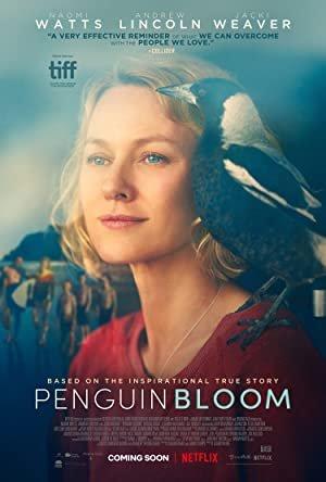 TIFF 2020 - Penguin Bloom Review