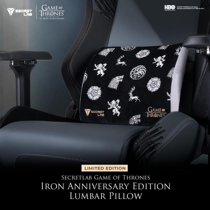Iron Anniversary Lumbar Pillow