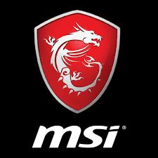 MSI GE76 Raider Review