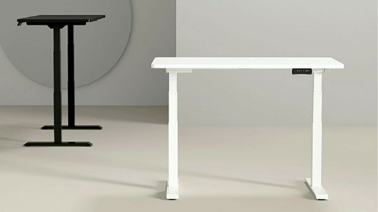 Flexispot Adjustable Standing Desk Pro Series Review 3