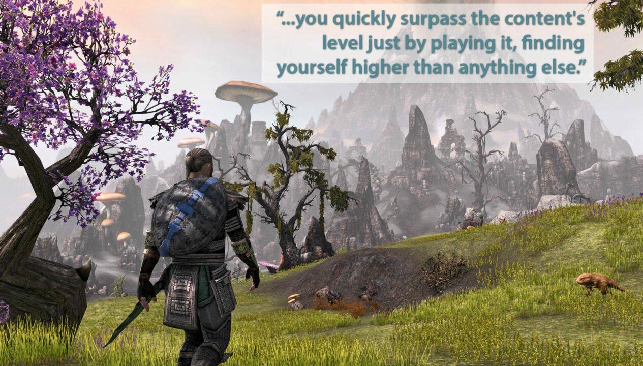 The Elder Scrolls Online (Pc) Review